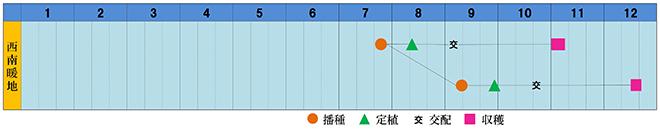 miranoaki-s.jpg