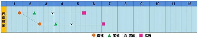 miranoharu2-s.jpg