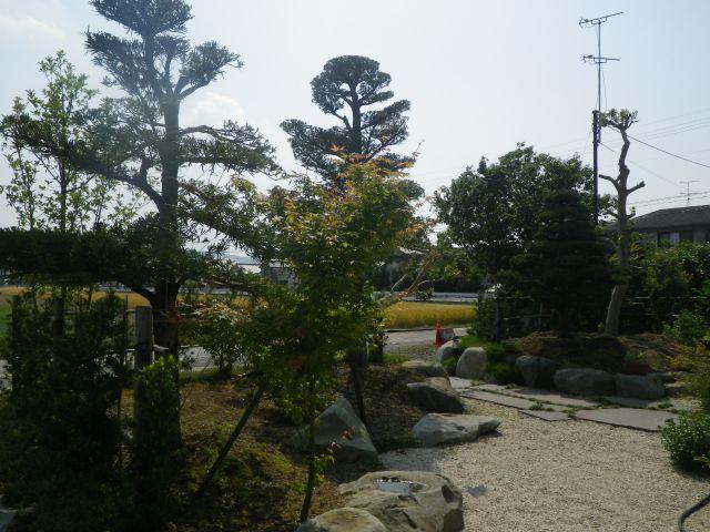 個人庭園3