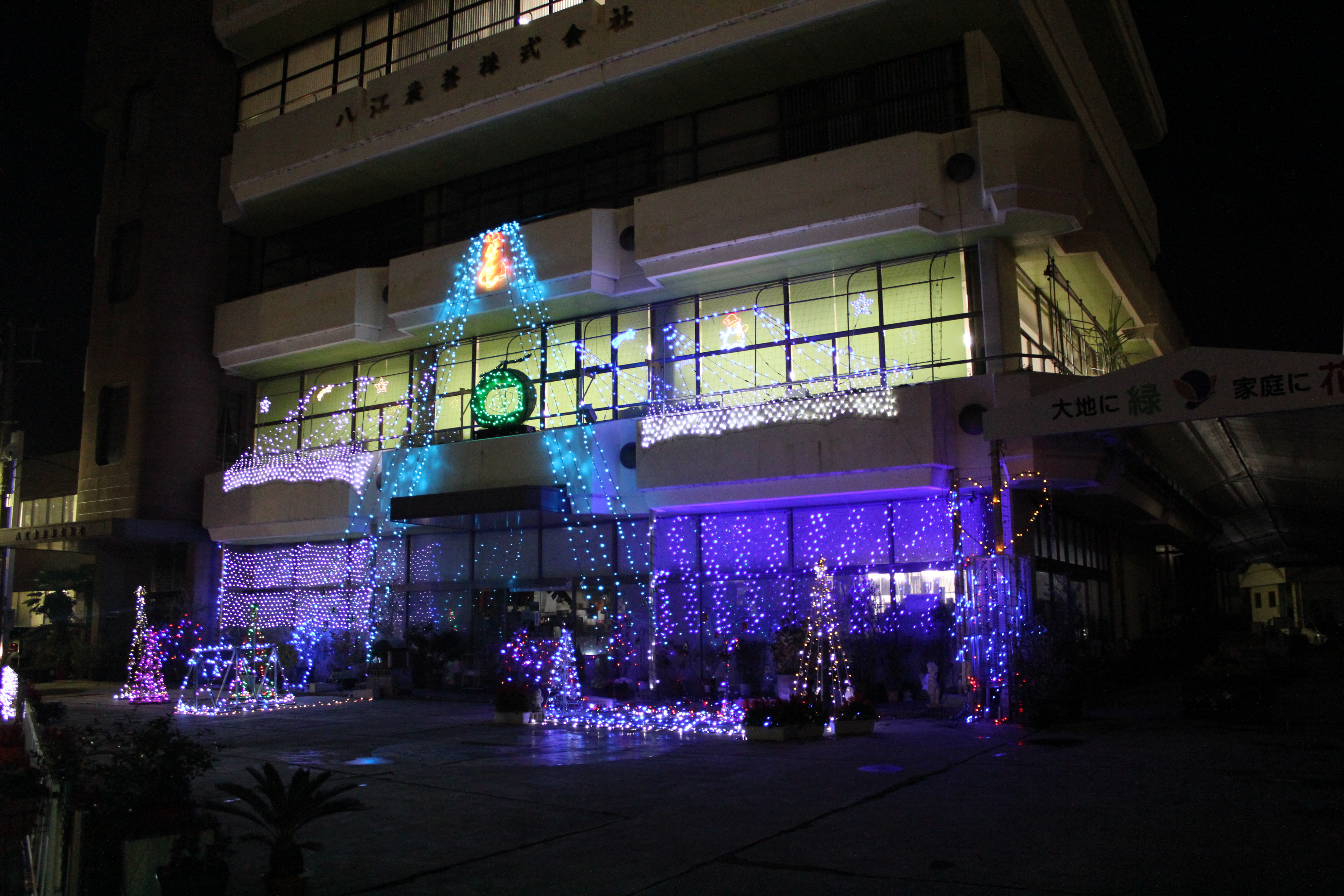 クリスマス2.JPG